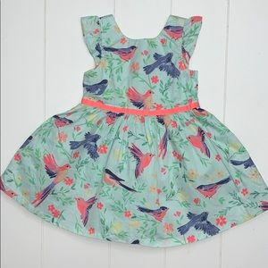 Birds of Paradise Dress With Full Skirt Size 2T